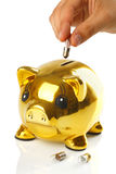 Golden piggy bank with small light bulbs Stock Photos