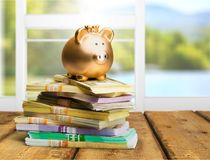 Golden Piggy bank on stack of banknotes on. Bank pig banknotes piggy background money small Stock Photos