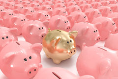 Golden piggy bank standing out from others Stock Image