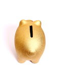 Golden piggy bank from top view Stock Images