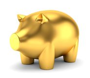 Golden piggy bank. Toy isolated on white background Stock Images