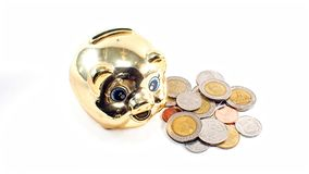 Golden piggy bank Stock Photo