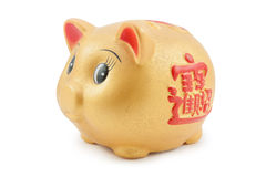 Golden piggy Royalty Free Stock Photography