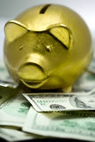 Golden piggy money box. Royalty Free Stock Photos