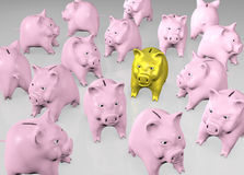 Golden piggy into the pink crowd Royalty Free Stock Image