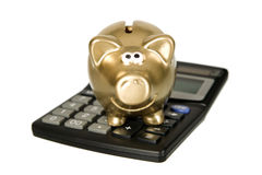 Golden piggybank with calculator Royalty Free Stock Images