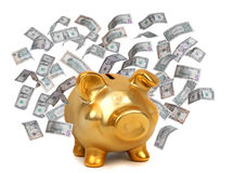 Golden piggybank and dollars Stock Image