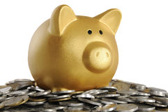 Free Golden Piggybank With Coins Stock Images - 30863994
