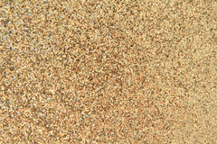 Golden pigment background Royalty Free Stock Image