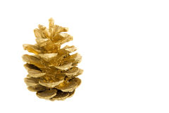Golden pine cone Royalty Free Stock Photography