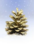 Golden pine cone. Against snowy sky Stock Photos