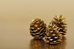 Golden pine cones Royalty Free Stock Images