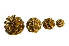 Golden Pine Cones Stock Photo