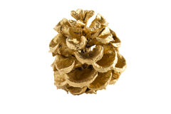 Golden Pine Cones Stock Image