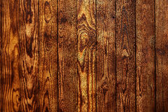 Golden pine wood background texture rustic Stock Photo
