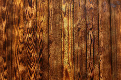 Golden pine wood background texture rustic Royalty Free Stock Photography