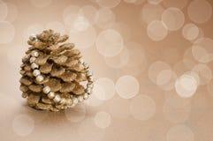 Golden pinecone Stock Photo