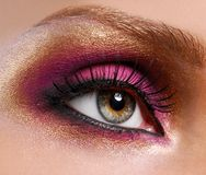 Golden-pink make-up. Royalty Free Stock Image