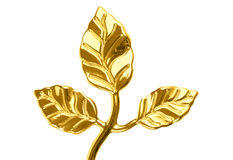 Golden plant Royalty Free Stock Image