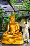Golden plastic Buddha with white plastic horse Royalty Free Stock Photos