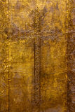 Golden plated church door Royalty Free Stock Photography