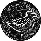 Golden Plover Standing Circle Tribal Art. Tribal Art style illustration of a Pacific golden plover, Pluvialis fluva or kolea, a medium-sized plover standing Royalty Free Stock Images