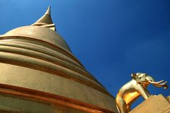 Golden pogoda of Wat Baworn,BKK Royalty Free Stock Photos