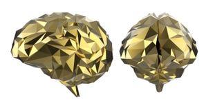 Golden polygonal brain. 3d rendering golden polygonal brain isolated on white