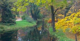 Golden pond in Lazienki Park in Warsaw Stock Photos