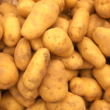 golden potato Stock Images