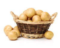 Golden Potatoes Stock Images