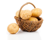 Golden Potatoes Royalty Free Stock Image