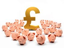 Golden pound symbol and piggybanks Stock Image