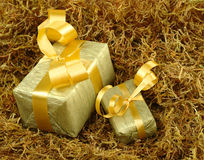Golden Presents Stock Images