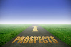 Golden prospects concept. Prospects printed in gold on road with green grass on each side Stock Photography