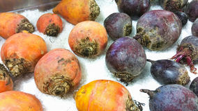 Golden and purple beetroots Royalty Free Stock Image