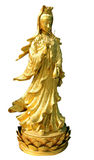 Golden Quan-Yin Buddha. Isolated Stock Photo
