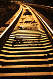 Golden rails. Golden railway tracks during sunset Royalty Free Stock Images