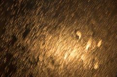 Golden rain Stock Images