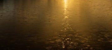 Golden rain, Rain drops falling as the sun rises. This allows the golden morning sun at the same time as distinctive rain ripples Stock Photos