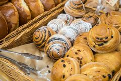 Golden raisin and poppy bread. Freshly baked delicious bread buns. Bakery stock photo