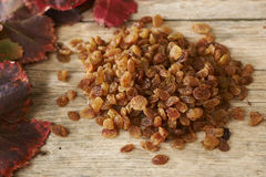 Golden raisins over wooden table with autumn grape leaves Royalty Free Stock Image