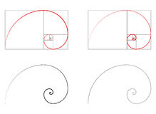 Golden ratio spiral section set. Vector illustration vector illustration