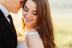 Golden rays of evening sun beautify pretty wedding couple. Golden rays of evening sun beautify pretty bride leaning to a groom Royalty Free Stock Images
