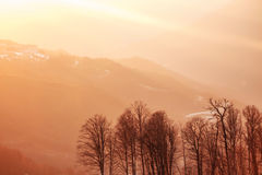 Golden rays of the sun at sunset in the mountains. Golden rays of the sun at sunset in the snowy mountains Stock Images