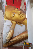 Golden reclining Buddha. In peaceful Royalty Free Stock Photos