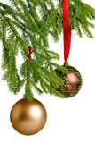 Golden and red christmas balls on fir Royalty Free Stock Images