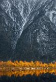 Golden Reflection Of Autumn Beerch Trees In Blue Water At Sunset.  Landscape With Autumn Trees And Snow-Covered Rocky Mountains. Stock Photos