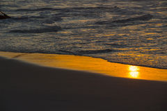 Golden reflection on beach sand after wave crash Stock Images