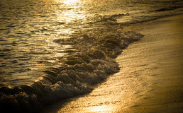 Golden reflection of the sunset on the beach Stock Images